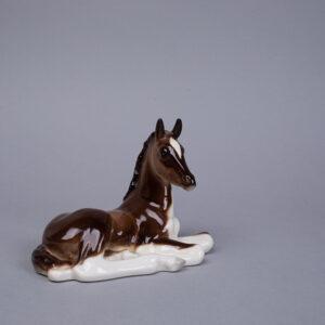 Lomonosov hevonen/varsa